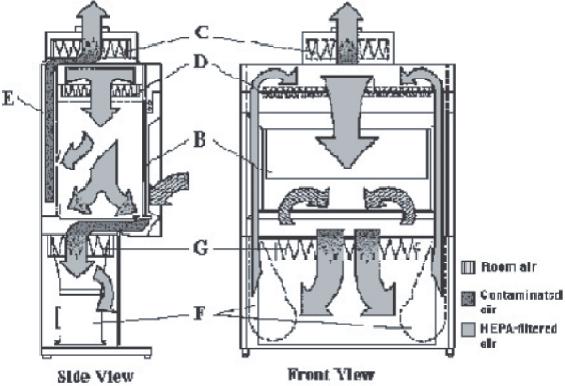 Figure 05A