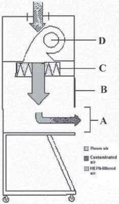 Figure 09B
